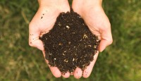 Three Steps to Compost