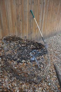 Setting Up Your Compost Pile
