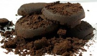 Used Coffee Grounds are Magic in Compost
