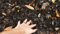 How do I speed up my compost?