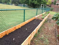 School Community Garden Bed